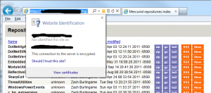 IE Security Report